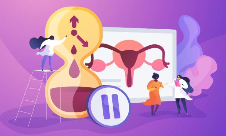 What Is Menopause? Know Everything About It