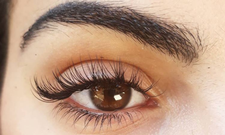 What Makes Lilash an Excellent Eyelash Stimulator Product?
